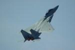rjnsphotoclub-No.07さんが、岐阜基地で撮影した航空自衛隊 F-15DJ Eagleの航空フォト(飛行機 写真・画像)