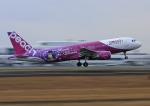 鹿児島空港 - Kagoshima Airport [KOJ/RJFK]で撮影されたピーチ - Peach [MM/APJ]の航空機写真