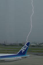 そばぬこさんが、伊丹空港で撮影した全日空 777-381の航空フォト(写真)