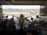 JA8957-JA8956さんが、羽田空港で撮影した全日空 747-481(D)の航空フォト(写真)