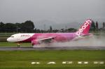 りんたろうさんが、鹿児島空港で撮影したピーチ A320-214の航空フォト(写真)