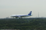 meijeanさんが、成田国際空港で撮影した全日空 A320-214の航空フォト(写真)