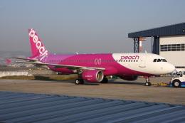 WING_ACEさんが、伊丹空港で撮影したピーチ A320-214の航空フォト(飛行機 写真・画像)