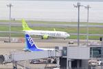 ふじいあきらさんが、羽田空港で撮影したソラシド エア 737-81Dの航空フォト(写真)