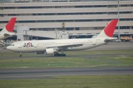 TAGUさんが、羽田空港で撮影した日本航空 A300B4-622Rの航空フォト(飛行機 写真・画像)