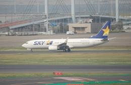 TAGUさんが、羽田空港で撮影したスカイマーク 737-8FZの航空フォト(飛行機 写真・画像)