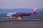 SKYLINEさんが、関西国際空港で撮影したピーチ A320-214の航空フォト(飛行機 写真・画像)