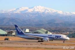 RINA-281さんが、小松空港で撮影した全日空 787-8 Dreamlinerの航空フォト(飛行機 写真・画像)