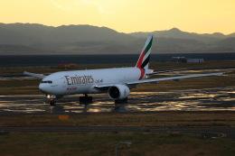 T.Sazenさんが、関西国際空港で撮影したエミレーツ航空 777-F1Hの航空フォト(飛行機 写真・画像)