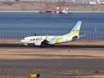 暖房さんが、羽田空港で撮影したAIR DO 737-781の航空フォト(写真)
