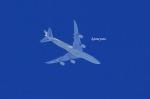 airline Nagoyaさんが、中部国際空港で撮影したエティハド航空 747-87UF/SCDの航空フォト(飛行機 写真・画像)