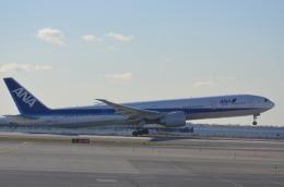 Korean Air KEさんが、ジョン・F・ケネディ国際空港で撮影した全日空 777-381/ERの航空フォト(飛行機 写真・画像)