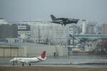 アローズさんが、福岡空港で撮影した陸上自衛隊 LR-1の航空フォト(写真)
