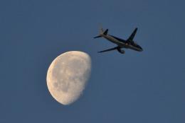 gucciyさんが、羽田空港で撮影したスターフライヤー A320-214の航空フォト(飛行機 写真・画像)