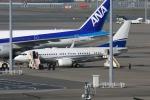 羽田空港 - Tokyo International Airport [HND/RJTT]で撮影されたロイヤル・ジェット - Royal Jet [ROJ]の航空機写真