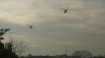 pu_reiyerさんが、東京ヘリポートで撮影した警視庁 AW139の航空フォト(写真)