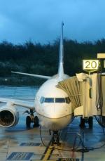 Dojalanaさんが、アントニオ・B・ウォン・パット国際空港で撮影したユナイテッド航空 737-724の航空フォト(写真)
