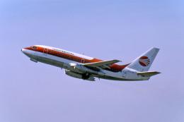 Gambardierさんが、ミネアポリス・セントポール国際空港で撮影したコンチネンタル航空 737-291の航空フォト(飛行機 写真・画像)