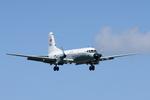 xxxxxzさんが、厚木飛行場で撮影した海上自衛隊 YS-11-112Mの航空フォト(飛行機 写真・画像)