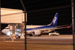山猿さんが、岩国空港で撮影した全日空 737-881の航空フォト(飛行機 写真・画像)