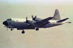 apphgさんが、厚木飛行場で撮影したアメリカ海軍 VP-3A Orionの航空フォト(写真)