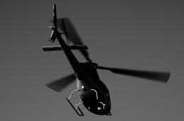 リーペアさんが、浦安ヘリポートで撮影したエクセル航空 AS355N Ecureuil 2の航空フォト(飛行機 写真・画像)