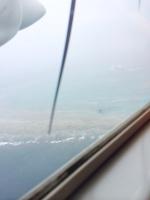 F103の搭乗レビュー写真