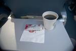 DL1187の搭乗レビュー写真