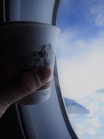 VN0252の搭乗レビュー写真
