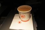 AC875の搭乗レビュー写真