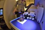 NH106の搭乗レビュー写真
