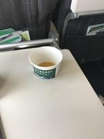 NH1767の搭乗レビュー写真