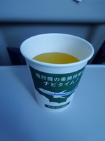 NH14の搭乗レビュー写真