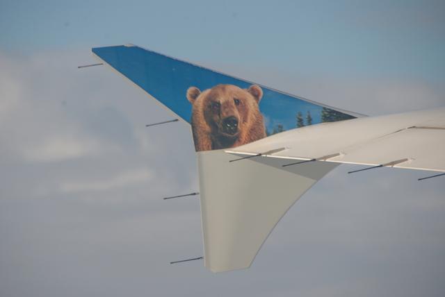 F9 261の搭乗レビュー写真
