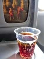 7Y131の搭乗レビュー写真