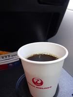 JL029の搭乗レビュー写真