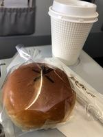 JW101の搭乗レビュー写真