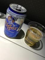 SQ618の搭乗レビュー写真
