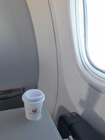 nu051の搭乗レビュー写真