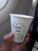 JW905の搭乗レビュー写真