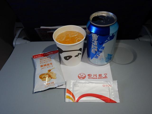 3U8087の搭乗レビュー写真
