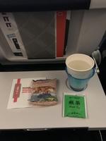 UA876の搭乗レビュー写真