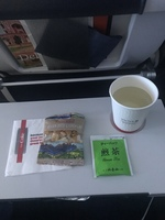 UA875の搭乗レビュー写真