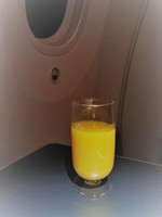 JL079の搭乗レビュー写真