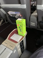 JL304の搭乗レビュー写真