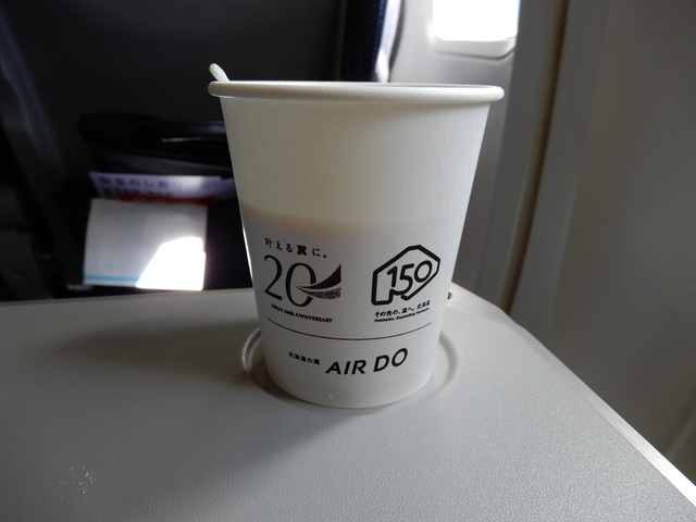 NH4819の搭乗レビュー写真
