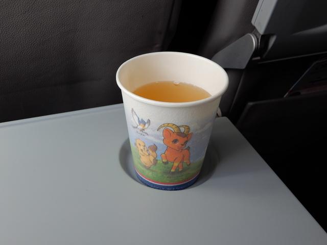 NH3181の搭乗レビュー写真