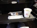 JL3002の搭乗レビュー写真