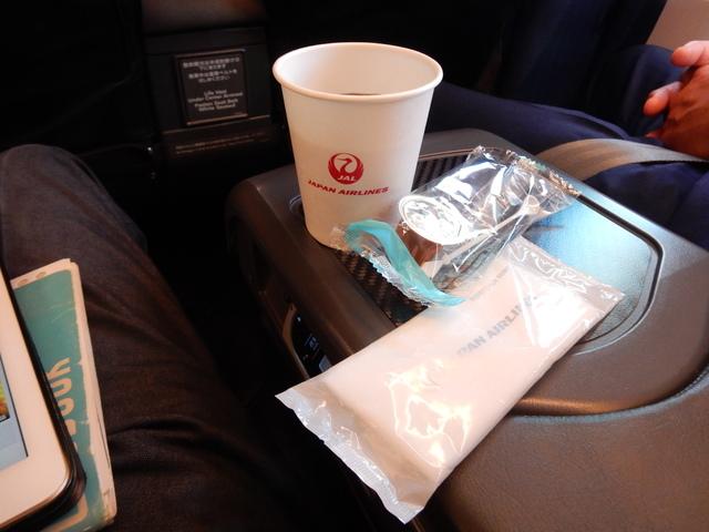 JL127の搭乗レビュー写真