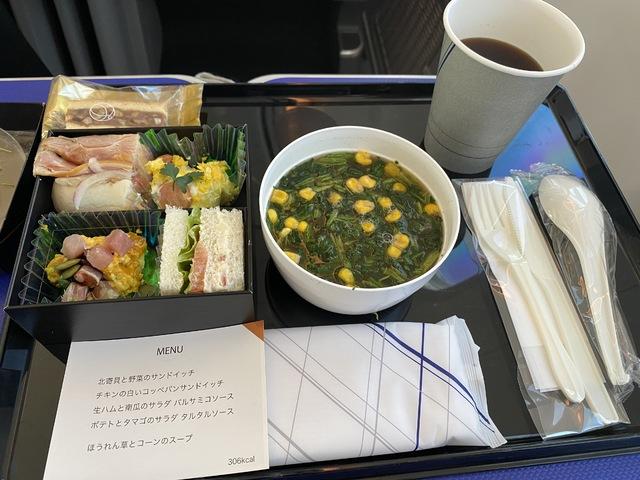NH17の搭乗レビュー写真